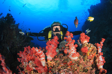 Blonde woman scuba diver explore coral reef in ocean