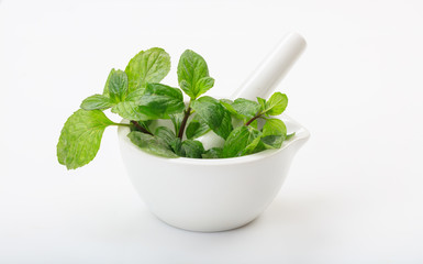 Fresh basil in a mortar on white background