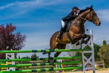Photo sur Plexiglas Equitation Equitation, saut d'obstacles, compétition.