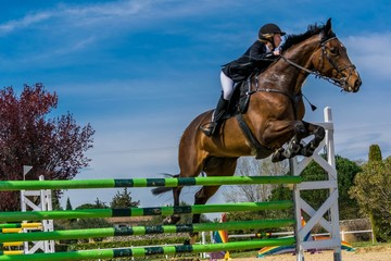 Türaufkleber Reiten Equitation, saut d'obstacles, compétition.