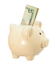 Piggy bank in the image of a pig with a bill of 5 dollars. Isolated