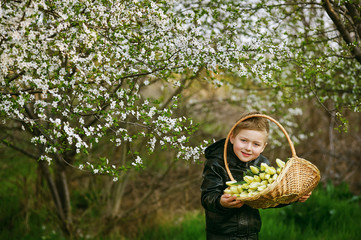 the boy holds tulips on the background of a blooming garden .