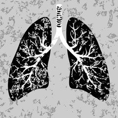 Human lungs organ isolated on white background representing the medical respiratory system to provide oxygen to the body vector eps 10