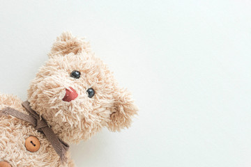 Teddy bear seat on white fabric background
