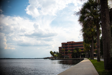 Florida Landscape and Atlantic Ocean