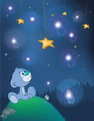 The Adventures of Little Bear. Fantastic Night