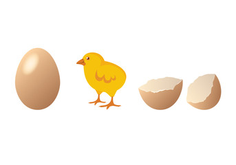 Chicken and egg vector. Cute chick hatching. Cartoon chicken. Easter illustration