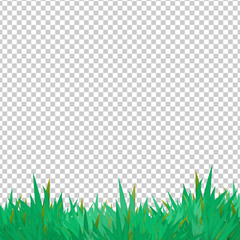 Vector grass elements on transparent groundwork