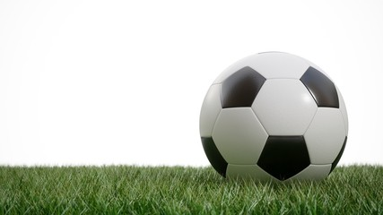 3D rendering Isolated Soccer Ball in the grass on white background