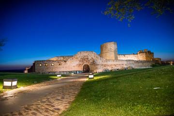 Calle aceso al castillo de Zamora, España