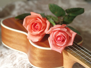 Rose on ukulele, Love, Valentines concept.