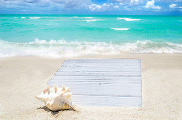 White wood board with seashell on the sandy beach
