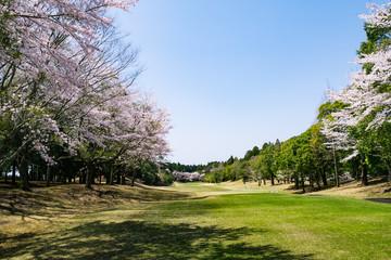 ゴルフ場 千葉県
