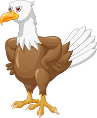 Cute eagle cartoon posing vector illustration