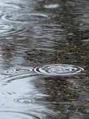 Regentropfen in der Pfütze