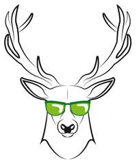 cool deer