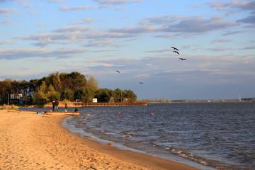 Rodzina z dziećmi nad brzegiem jeziora, ptaki.