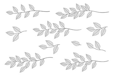 branches with leaves set