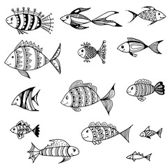 A set of fish of different styles