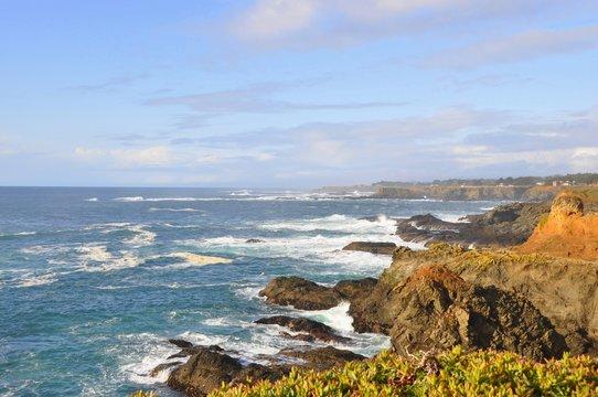 Mendocino Coast 6