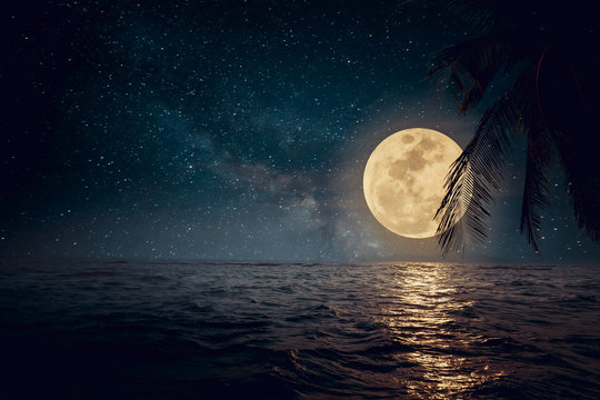 Beautiful fantasy tropical beach with star and full moon in night skies - Retro style artwork with vintage color tone