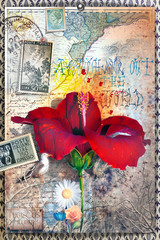 Wall Murals Imagination Old fashioned postcard with hibiscus flower,collage and vintage stamps
