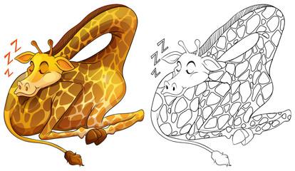Animal outline for giraffe sleeping