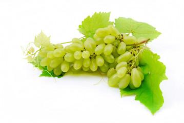 Green grapes close-up .