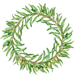 Watercolor wreath with olive branches. Hand painted floral border with olive fruit and tree branches with leaves isolatedon white background. For design, print and fabric