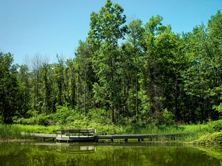 Ojibway Park Boardwalk and Pond