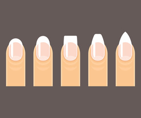 Manicure nail shapes
