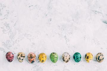 Colourful quail eggs