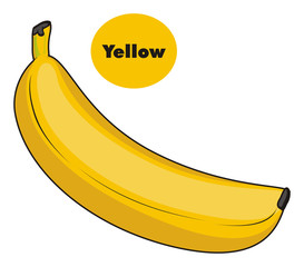 Fruit, banana, long, palm, yellow, food, health, cartoon, round, colored, word, signs