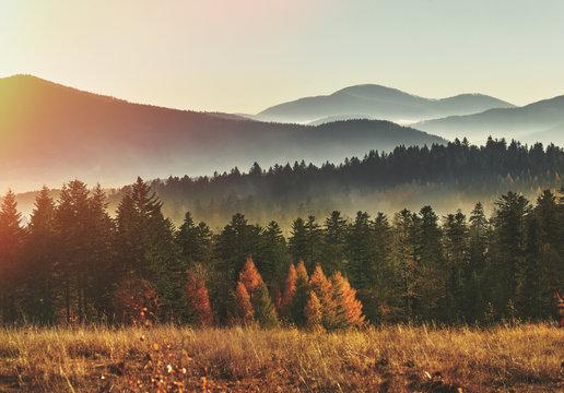 Amazing mountain landscape with fog. Beskid Mountains. Poland. Mountains scenery