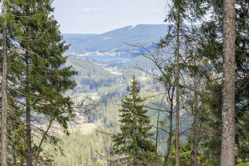 Ausblick im Schwarzwald