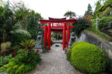 Tropischer Garten Monte Palace auf der Insel Madeira