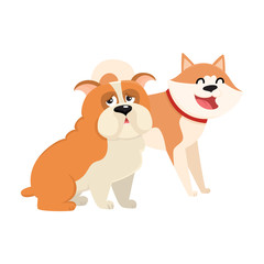 Couple of cute, funny dog characters - Japanese akita inu and English bulldog, cartoon vector illustration isolated on white background. Lovely bulldog and akita inu characters, dog breeds