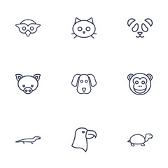 Set Of 9 Brute Outline Icons Set.Collection Of Monkey, Eagle, Cat And Other Elements.
