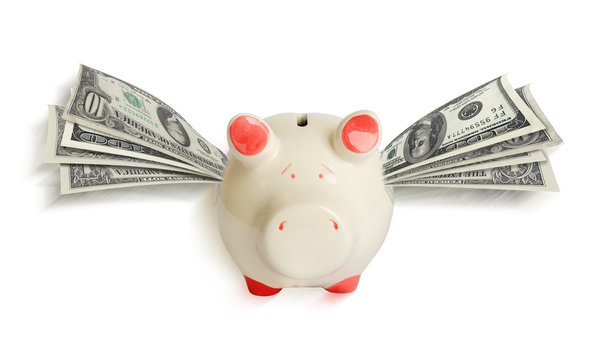 A white piggy bank with wings of paper dollars