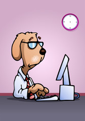 business dog using computer