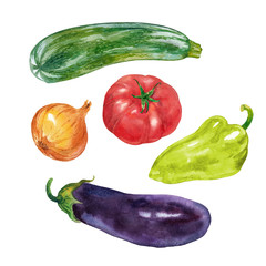 Vegetables. Zucchini, tomato, pepper, eggplant, onion. Watercolor.