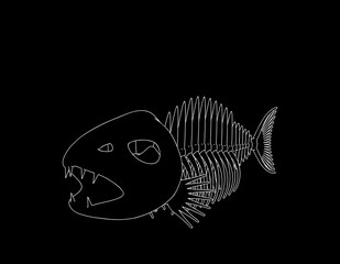 Fish skeleton. Isolated on black background. Vector outline illustration.