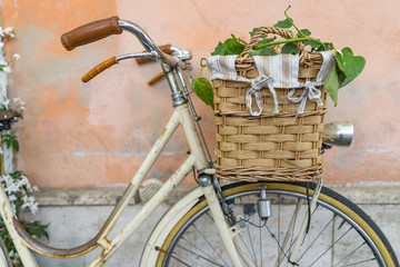 Printed kitchen splashbacks Bicycle wicker basket with a decoration bouquet of plant on a vintage bicycle with pastel background.