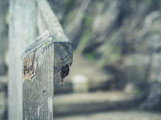 wooden banister in nature