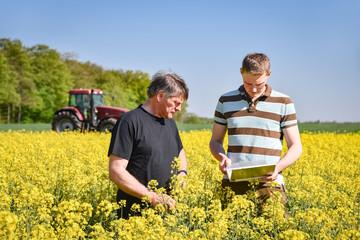 Ackerbau - Ertrag, Landwirt berät sich mit seinem Sohn im Rapsfeld