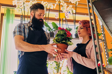 Redhead female and bearded tattooed male selling flowers in a market shop.