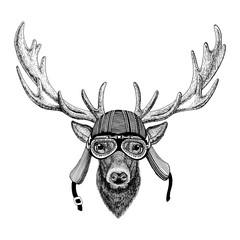 Deer Hand drawn image of animal wearing motorcycle helmet for t-shirt, tattoo, emblem, badge, logo, patch