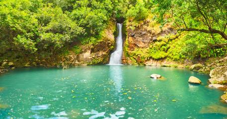 Cascade Chamouze waterfall. Mauritius. Panorama