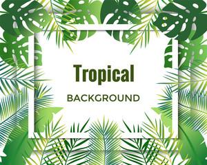 Jungle background.