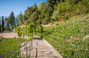 The Botanic Gardens of Trauttmansdorff Castle, Merano, south tyrol, Italy,